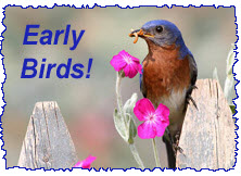 early-bird copy